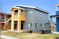 2431 Forest gallery 4